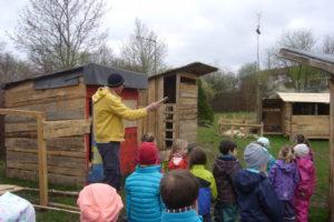 Holz aussuchen für Insektenhotel